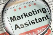 We are hiring: Marketing Assistant/Intern/Graphic Designer
